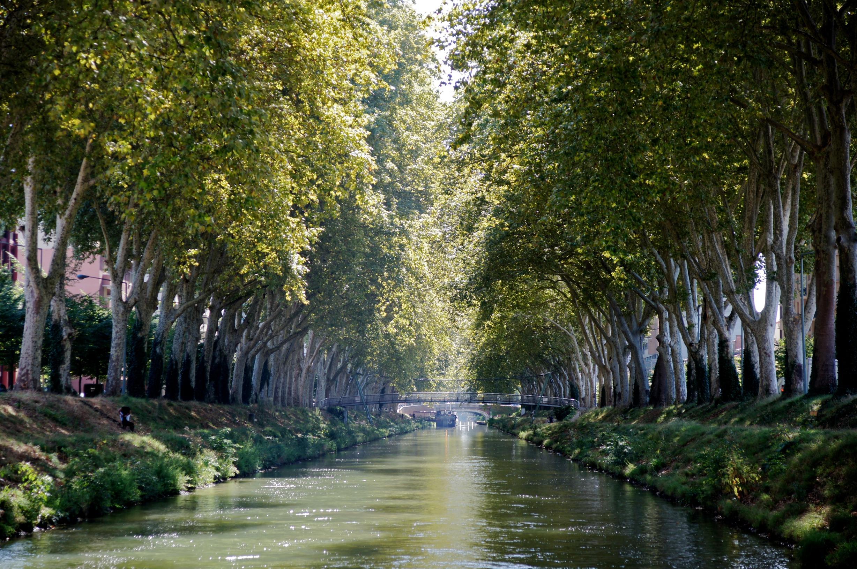 ミディ運河の画像 p1_24
